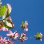 家装知识|春季装修,这几项要注意!